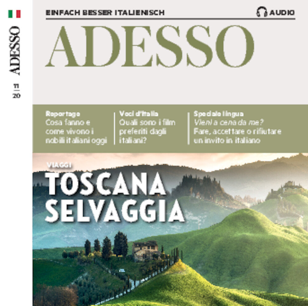 Adesso Audio Trainer ePaper 11/2020